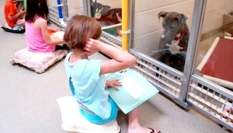 Beautiful things can happen when kids read to dogs. | Civics and Citizenship | Scoop.it