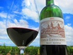 2003 Bordeaux Vintage Report Tasting Notes Ratings Buying Tips | Vitabella Wine Daily Gossip | Scoop.it