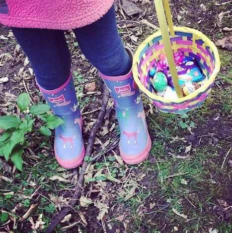 Look: The best of YOUR 'eggs-cellent' Easter photos   Allsopp and Allsopp   Scoop.it