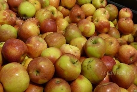 Trop de pesticides dans les pommes des supermarchés ? | Chronique d'un pays où il ne se passe rien... ou presque ! | Scoop.it