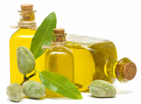 Carrier Oils Wholesale, Buy Organic Carrier Oils at Bulk Prices | 100% Pure and Orgnic Carriers Oils | Scoop.it