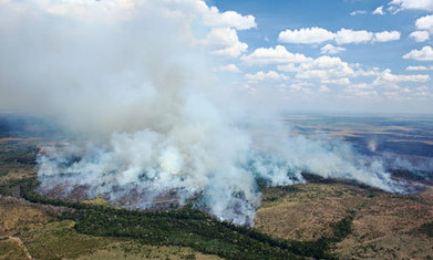 Brazil's Amazon rangers battle farmers' burning business logic | The Glory of the Garden | Scoop.it