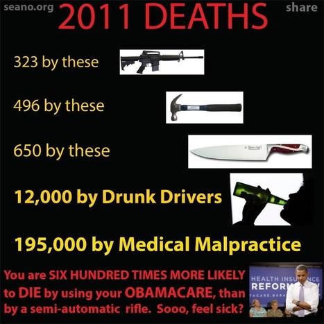 2011 DEATHS | Criminal Justice in America | Scoop.it