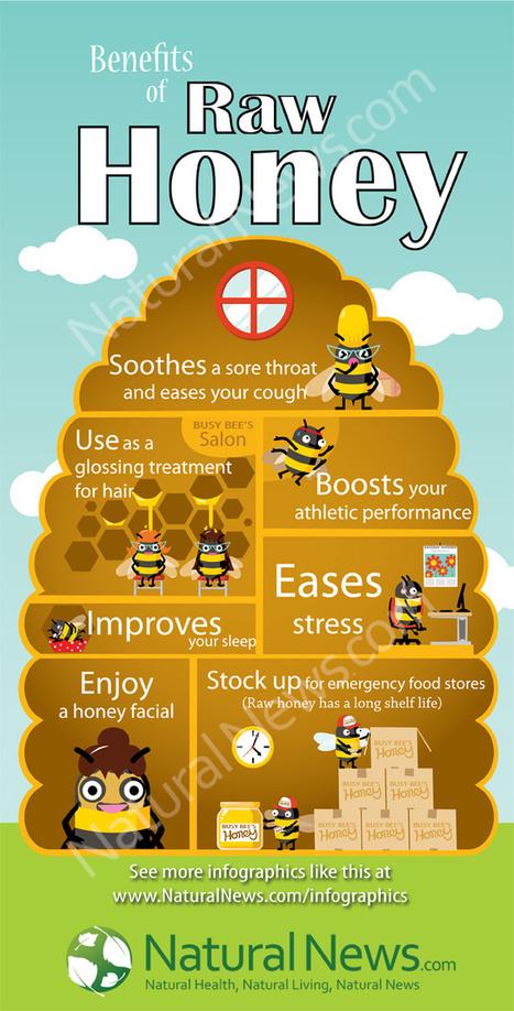Benefits of Dark Chocolate and Honey (Infographic) - Karma Jello | Healthy Living | Scoop.it