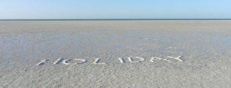 Shark Bay : comme un requin dans l'eau | Travel - Voyage | Scoop.it