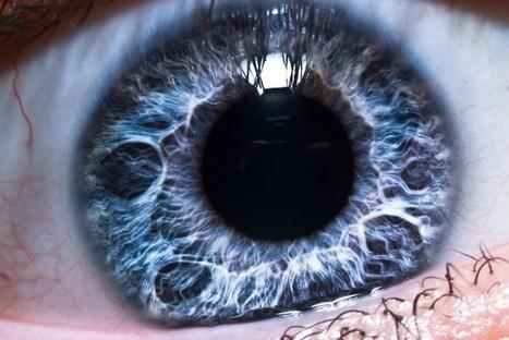 Sony Developing Eye-Tracking Autofocus Tech, Tentative 2014 Release - TechnoBuffalo   Eyetracking news   Scoop.it
