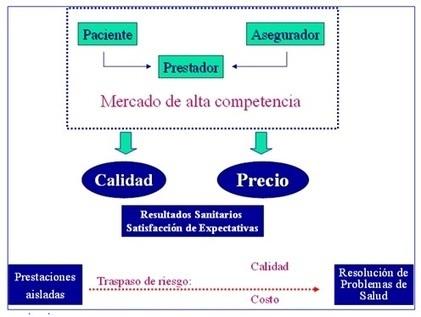 Conceptos y definiciones básicas de la gestión clínica - Medwave | Gestion Clinica Sanitaria | Gestión Sanitaria | Scoop.it
