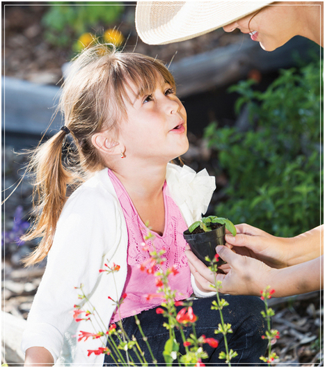 Lessons in Dirt: Using a Green Thumb for Learning At Home  | Parent Toolkit Blog | School Gardening Resources | Scoop.it