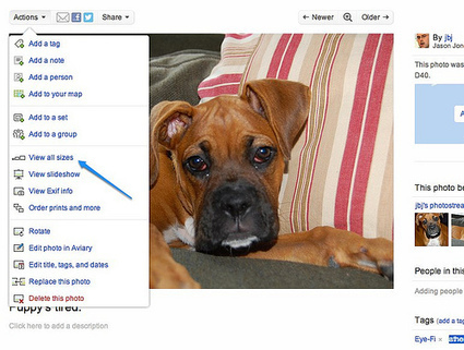 Five Ways to Use Flickr to Make Better Slides - ProfHacker - The Chronicle of Higher Education   Digital  Humanities Tool Box   Scoop.it