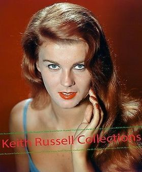 ANN MARGRET 8x10 Photo via Negative SEXY 60's STARLET COLLECTION AM01 @LegendsConcert | Keith Russell Collections | Scoop.it
