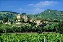 Highlights Newsletter - Walking in Burgundy   Walking Holidays in France   Scoop.it