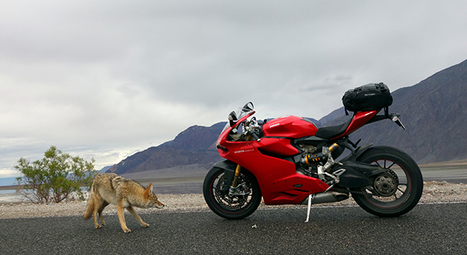 RideApart Review: Ducati 1199 Panigale S - Hell for Leather | Ductalk Ducati News | Scoop.it
