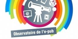 Le digital devient le 2e média investi par les annonceurs en France | Publicité online | Scoop.it