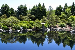 Japanese Gardens | Cole Ruddick – A Voyage of Discovery | Japanese Gardens | Scoop.it