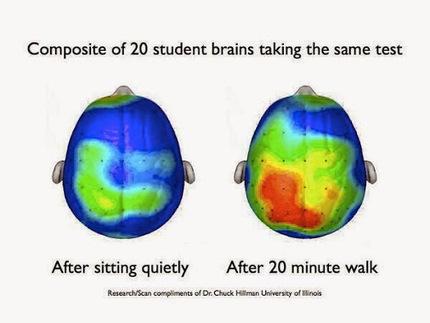 Memorizaci&oacute;n #1 - CAMINA ANTES DE UN EXAMEN<br/>Se ha probado que el ejercicio&hellip; | Sobre Did&aacute;ctica | Scoop.it