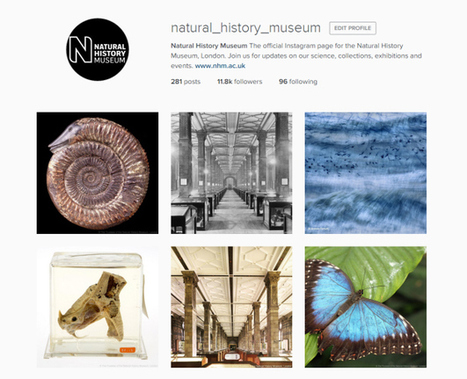 See London's museums from a different perspective with #MuseumInstaSwap | Take Part | Museums and emerging technologies | Scoop.it
