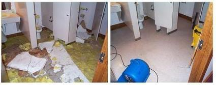 Choose a Best Carpet Cleaners Company in Norcross GA | Carpet Cleaners Norcross Ga | Scoop.it