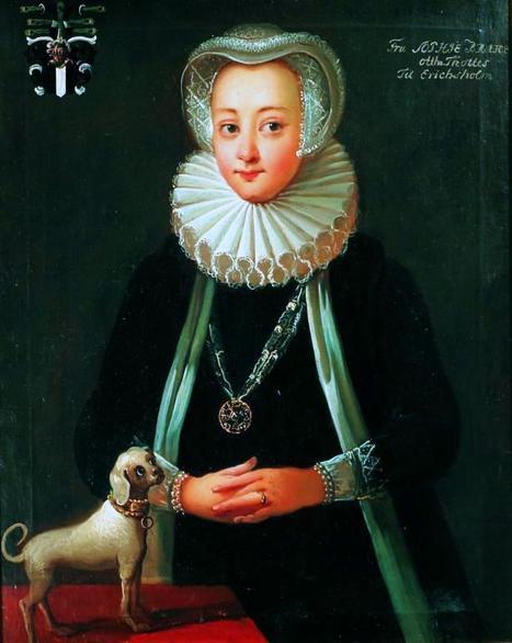 Les aventures d'Euterpe: Sophia Brahe, astronome, médecienne, chimiste, horticultrice, alchimiste, astrologue, généalogiste | Merveilles - Marvels | Scoop.it