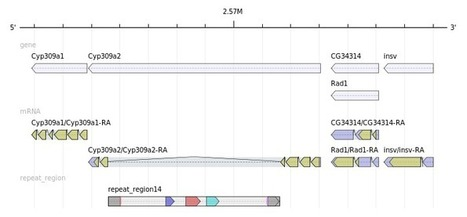 GenomeTools   Virology and Bioinformatics from Virology.ca   Scoop.it