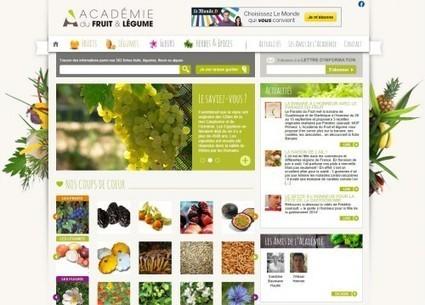 Une encyclopédie en ligne pour tout savoir sur les fruits et légumes | HORTICULTURE BOTANIQUE | Scoop.it