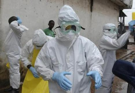 Ebola causing huge damage to West Africa economies: development bank | Reuters | Geography | Scoop.it