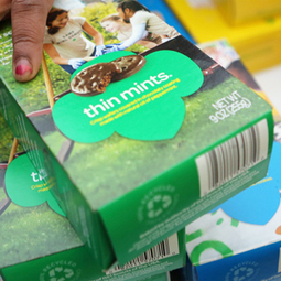 Thin Mint-loving thieves steal $19,000 worth of Girl Scout cookies | Radio Show Contents | Scoop.it