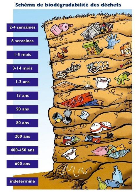 Infographie: la durée de vie des déchets dans la nature | Actualités générales Environnement et Développement durable | Scoop.it