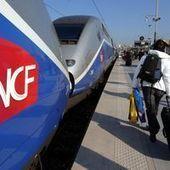 La fraude coûte 400 millions d'euros par an à la SNCF et la RATP | frenchrevolution | Scoop.it