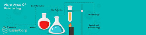 Outstanding Biotechnology Assignment Help   Educational Topics   Scoop.it