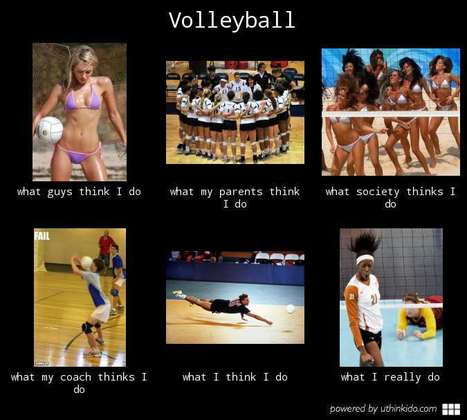 Volleyball   What I really do   Scoop.it
