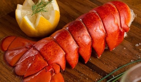 Lobster Tail Meat is Scrumptious and Wholesome | Its All About Seafood | Scoop.it