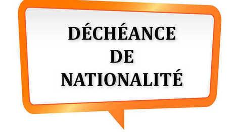 Déchéance de nationalité : en Alsace, comment va voter votre député ? | Alsace Actu | Scoop.it