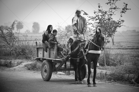 Mart of Imagez-Traveling on the horse cart. | Indian Images | Scoop.it