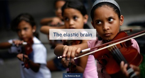 Can You Make You Brain As Plastic As a Child's? | Knowledge Broker | Scoop.it