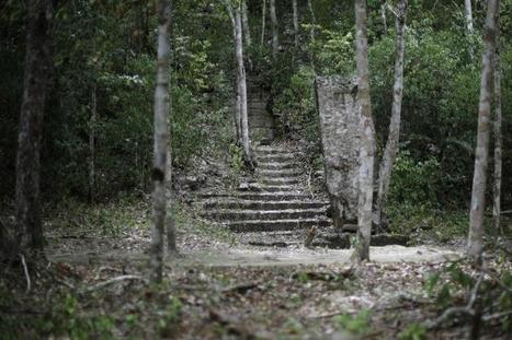Canadian Teen Discovers Ancient Maya Ruins By Studying Stars | ISKL EduTech | Scoop.it