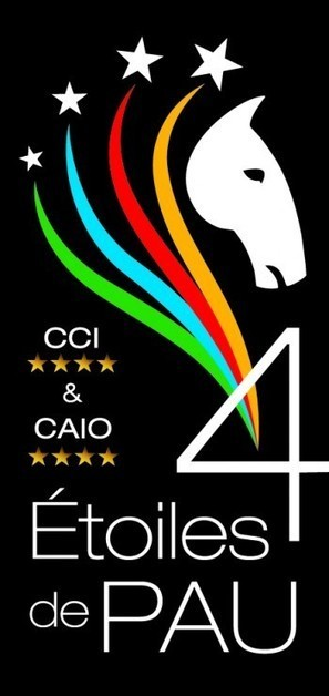Etoiles de Pau Concours Complet Equitation   Cheval et sport   Scoop.it