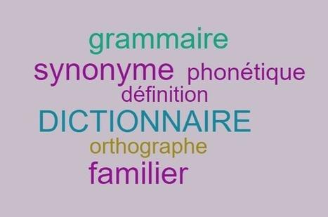 Pourquoi vous devez absolument consulter un dictionnaire de français | Remue-méninges FLE | Scoop.it