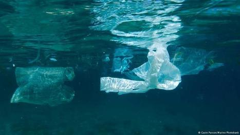 Cambodia's battle against plastic bag waste  | GAIA News | Scoop.it