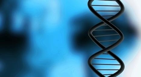 Un ADN vieux de 400 000 ans livre ses secrets - Le Nouvel Observateur   Evolution de l'Homme   Scoop.it