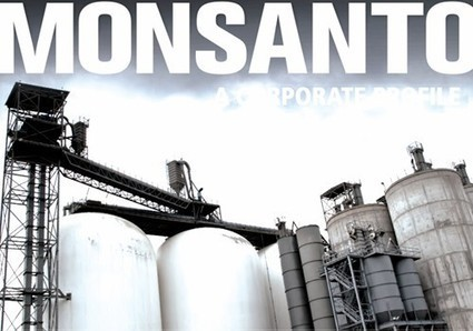 Monsanto: A Corporate Profile Sheds Light on GE Seed Giant's Dark History | EcoWatch | Scoop.it