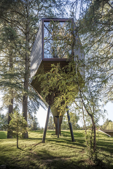 Tree SNAKE Houses by Rebelo de Andrade Studio in Portugal's Pedras Salgadas Park | The Architecture of the City | Scoop.it