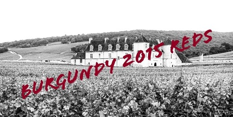 First impressions of the 2015 vintage - reds | Wine website, Wine magazine...What's Hot Today on Wine Blogs? | Scoop.it