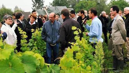 Il y aura du vouvray à vendre l'année prochaine - 24/09/2013, Vouvray (37) - La Nouvelle République | Vins de Vouvray | Scoop.it