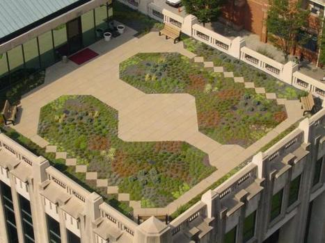6 Successful, Sustainable Green Roof Projects | Green Buildings & Architecture | PowerHouse Growers | Urban Agriculture and Design | Scoop.it