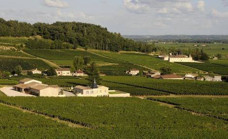 Dijon : la ville veut faire renaître son patrimoine viticole oublié   Le vin quotidien   Scoop.it