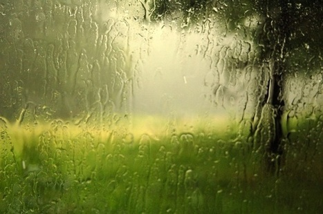 Why the World Smells Different After It Rains | Sustainable Futures | Scoop.it
