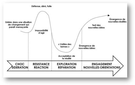 La dynamique du changement - Institut maïeutis   Coaching Management   Scoop.it