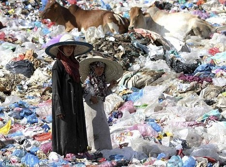 The great recycling con trick: How 12million tons of your carefully sorted waste is being dumped in foreign landfill sites | Sustain Our Earth | Scoop.it