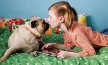Will dogs instinctively protect children? : Dog Guide: Animal Planet | dogs | Scoop.it