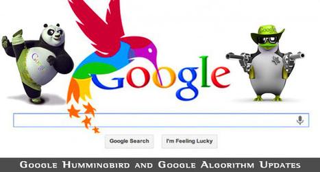 Google Hummingbird and Google Algorithm Updates • TechLila | Semantic Search | Scoop.it